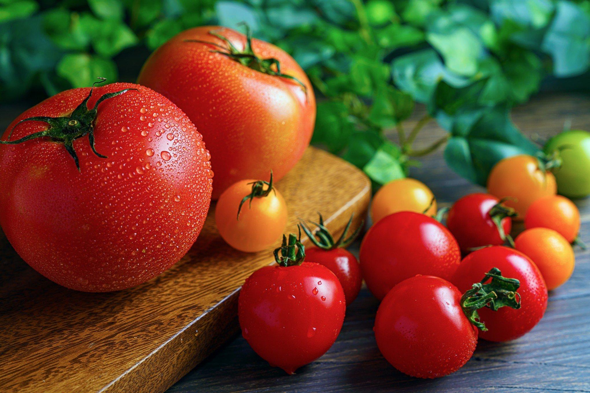 Tomate é o fruto com maior variação